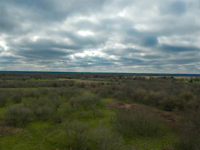 TBD Co Road 4061, Kemp, TX 75143 (MLS #14263583) :: The Mitchell Group