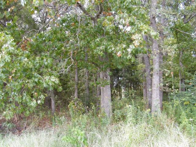 Lot 163 Clubhouse Drive, Corsicana, TX 75109 (MLS #14265203) :: The Chad Smith Team