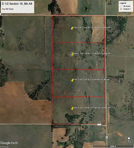 Tract 1 Us Hwy 83, Shamrock, TX 79096 (MLS #14267200) :: All Cities Realty