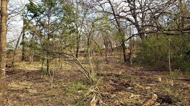 Lot 4 Creekview Court, Argyle, TX 76226 (MLS #14273494) :: North Texas Team | RE/MAX Lifestyle Property