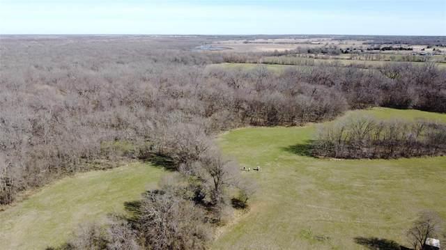 88 AC Farm Road 3134, Cumby, TX 75433 (MLS #14275285) :: The Hornburg Real Estate Group