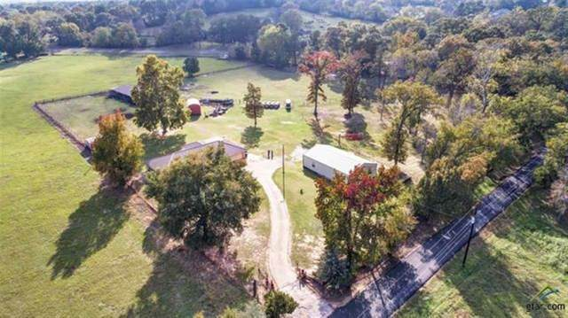 12013 County Road 461, Tyler, TX 75706 (MLS #14277355) :: RE/MAX Landmark