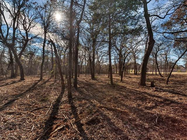 750 Copper Canyon Road, Copper Canyon, TX 76226 (MLS #14281749) :: Ann Carr Real Estate