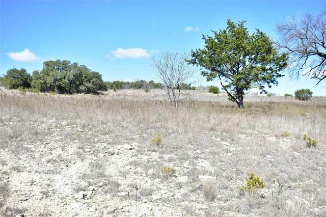 TBD - A Beacon Lake Drive, Bluff Dale, TX 76433 (MLS #14286033) :: The Hornburg Real Estate Group