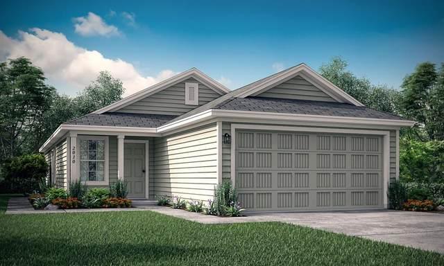 5521 Berea Street, Forney, TX 75126 (MLS #14309535) :: RE/MAX Landmark