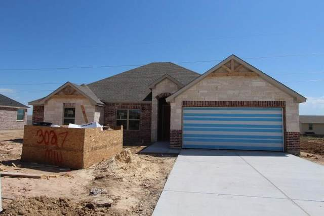 3027 Meandering Way, Granbury, TX 76049 (MLS #14313753) :: The Chad Smith Team