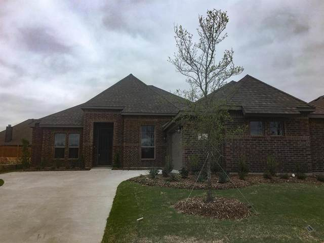 117 Cherrywood Circle, Red Oak, TX 75154 (MLS #14314288) :: The Kimberly Davis Group