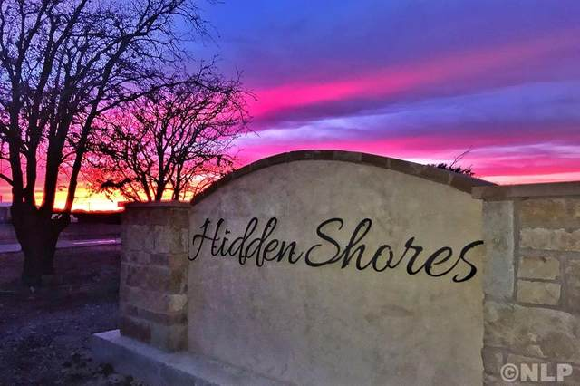 TBD Hidden Shores Drive, Cisco, TX 76437 (MLS #14322099) :: The Rhodes Team