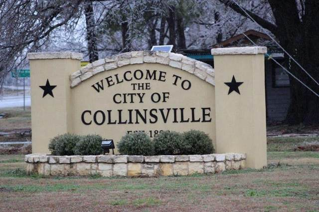 Lot 1 Pear Tree Lane, Collinsville, TX 76233 (MLS #14335049) :: All Cities USA Realty