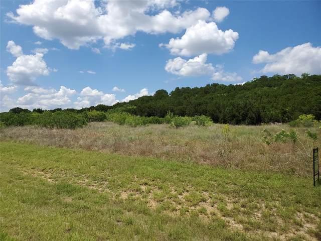 Lot 219 Fire Wheel Drive, Possum Kingdom Lake, TX 76449 (MLS #14344817) :: Trinity Premier Properties