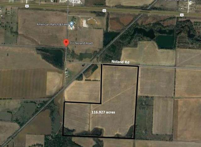 117 Noland Road, Whitesboro, TX 76273 (MLS #14354522) :: The Hornburg Real Estate Group