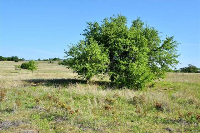 Lot 26 Aviara Ridge, Poolville, TX 76487 (MLS #14355078) :: ACR- ANN CARR REALTORS®
