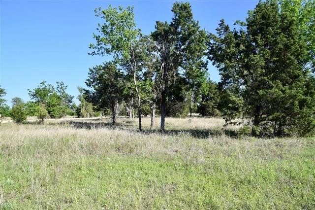 Lot 24 Aviara Ridge, Poolville, TX 76487 (MLS #14355134) :: ACR- ANN CARR REALTORS®