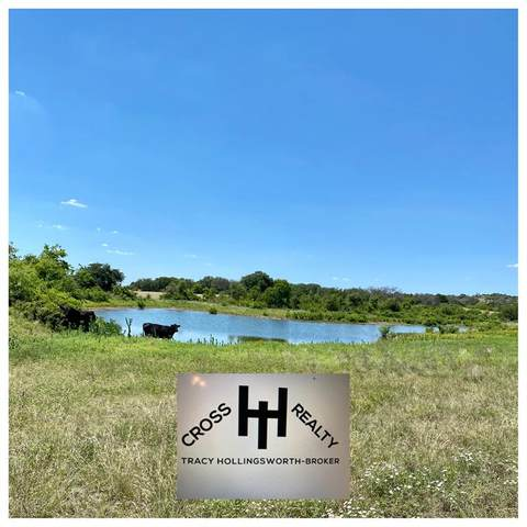 59 County Road 217, Goldthwaite, TX 76844 (MLS #14365648) :: The Good Home Team