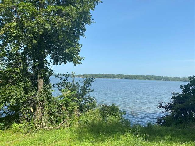 TBD Lot Caddo Trail, Scroggins, TX 75480 (MLS #14370164) :: The Hornburg Real Estate Group