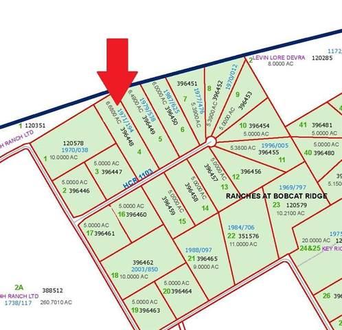 0 Hcr 1103, Blum, TX 76627 (MLS #14371428) :: The Hornburg Real Estate Group