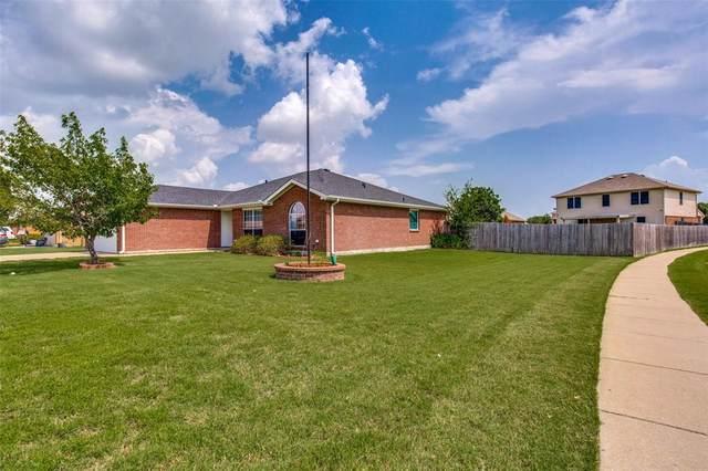 1600 Appaloosa Drive, Krum, TX 76249 (MLS #14377639) :: The Kimberly Davis Group