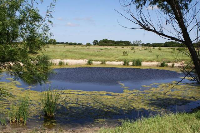 TBD County Road 123 Road, Comanche, TX 76442 (MLS #14378620) :: The Kimberly Davis Group