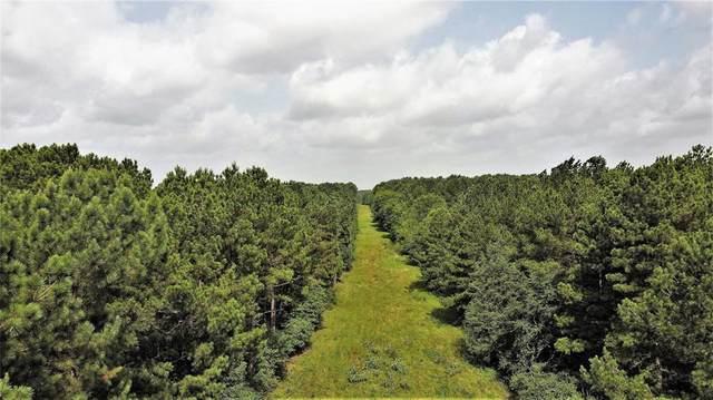 0 Hwy 80, Big Sandy, TX 75755 (MLS #14381421) :: Robbins Real Estate Group