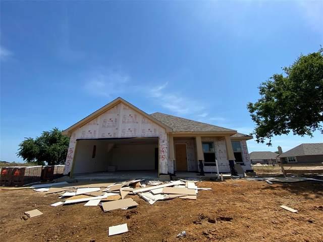 545 Carol Street, Pilot Point, TX 76258 (MLS #14385906) :: North Texas Team | RE/MAX Lifestyle Property