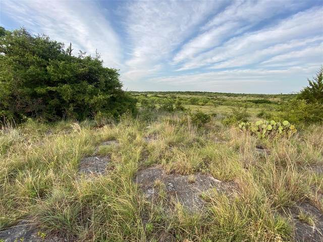 NA St Hwy 199 S, Jacksboro, TX 76458 (MLS #14397180) :: The Chad Smith Team