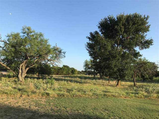 17022 Trailwood Drive, Whitney, TX 76692 (MLS #14399329) :: The Chad Smith Team