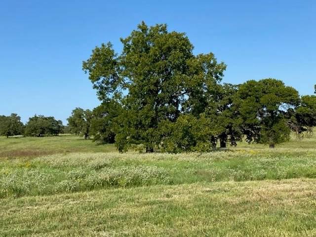 135 Sandy Court, Decatur, TX 76225 (MLS #14407085) :: Trinity Premier Properties