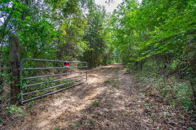 TBD County Road 2140, Troup, TX 75789 (MLS #14411826) :: The Heyl Group at Keller Williams