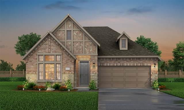 1370 Minnow Road, Irving, TX 75063 (MLS #14412400) :: The Tierny Jordan Network