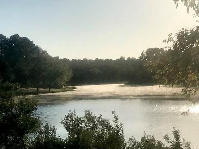 LT 223 Safari Shores Drive, Larue, TX 75770 (MLS #14414406) :: Team Hodnett