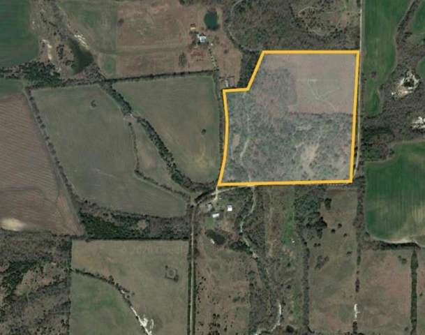 TBD County Rd 25630, Petty, TX 75470 (MLS #14423430) :: The Kimberly Davis Group