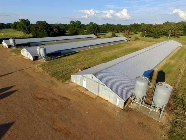 TBD County Road 3340, Omaha, TX 75571 (MLS #14424398) :: Robbins Real Estate Group