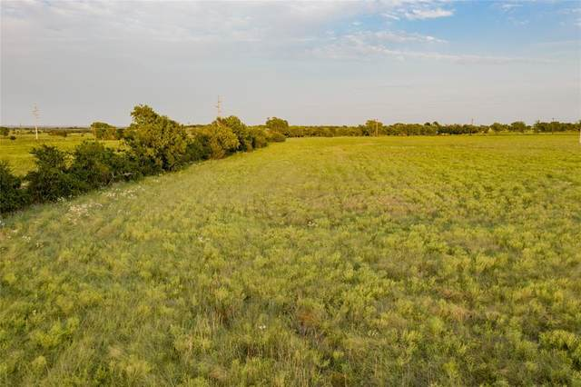 Lot 3 Leo Road, Decatur, TX 76234 (MLS #14429413) :: Team Tiller
