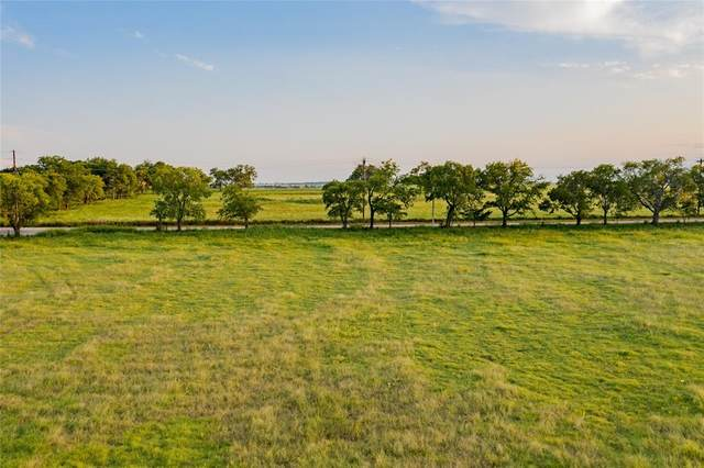 Lot 6 Leo Road, Decatur, TX 76234 (MLS #14429420) :: Team Tiller