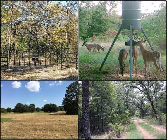 0 County Road 2404, Kemp, TX 75143 (MLS #14437197) :: The Mauelshagen Group