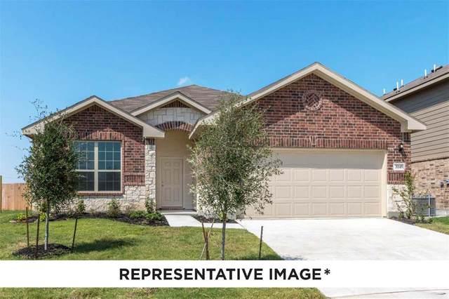 3141 Josefina Lane, Heartland, TX 75126 (MLS #14437590) :: Potts Realty Group