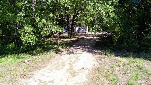 28840 Private Road 6103, Kemp, TX 75143 (MLS #14441443) :: Feller Realty