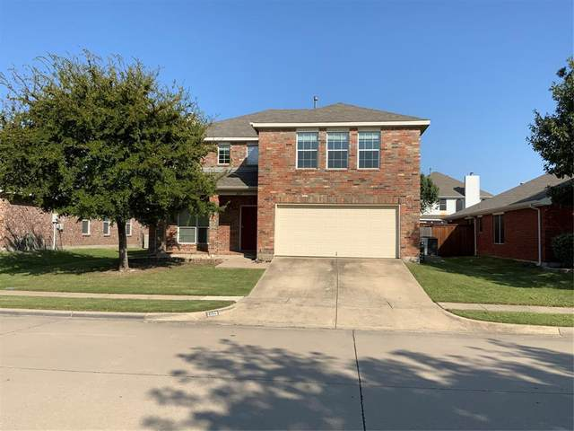 2029 Falls Creek Drive, Little Elm, TX 75068 (MLS #14441777) :: The Mitchell Group