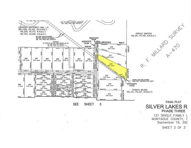 Lot 216 Silver Lakes Drive, Sunset, TX 76230 (MLS #14444214) :: The Kimberly Davis Group