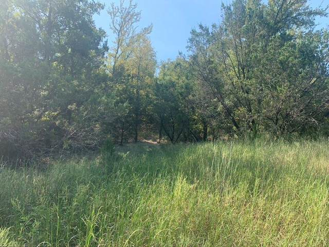 0 Anglers Point, Bluff Dale, TX 76433 (MLS #14444986) :: Feller Realty