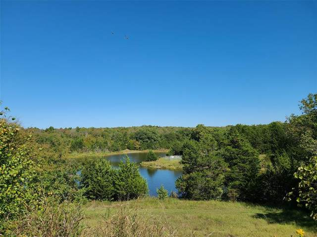 TBD Greenway Bend, Pottsboro, TX 75076 (MLS #14446657) :: Feller Realty