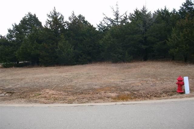161 Barrington Circle, Gordonville, TX 76245 (MLS #14449821) :: Premier Properties Group of Keller Williams Realty