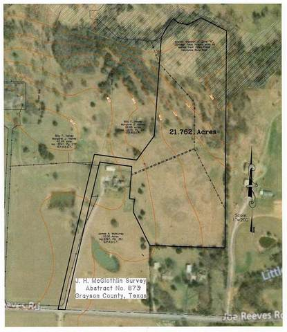 21.7 Ac Reeves Road, Pottsboro, TX 75076 (MLS #14450830) :: The Kimberly Davis Group
