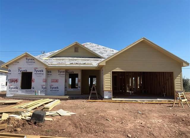 7349 Wildflower Way, Abilene, TX 79602 (MLS #14451611) :: The Mauelshagen Group