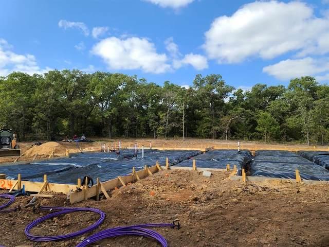 1124 Horizon Trace Drive, Azle, TX 76020 (MLS #14452347) :: Real Estate By Design