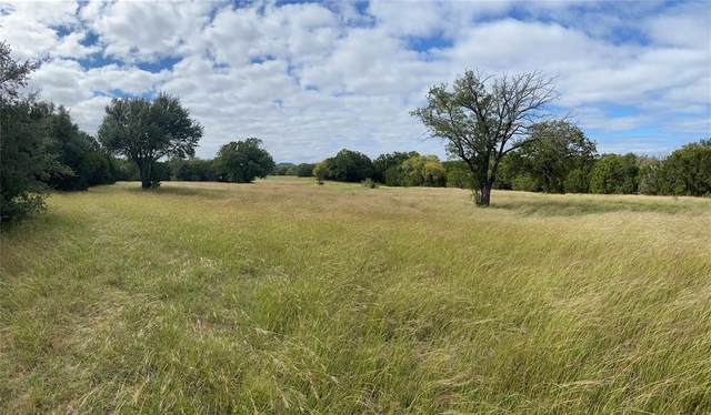 177 Pr 2163, Iredell, TX 76649 (MLS #14455711) :: The Russell-Rose Team