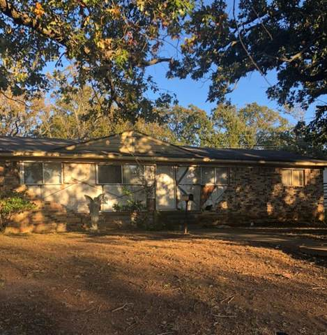 100 S Hickory Avenue, Denison, TX 75020 (MLS #14462745) :: The Chad Smith Team