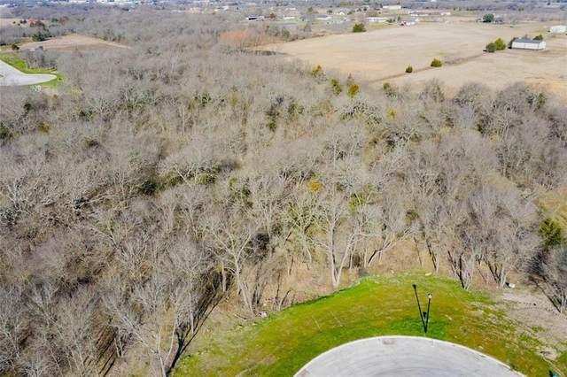 56 B Vista Oak, Royse City, TX 75189 (MLS #14478306) :: Jones-Papadopoulos & Co