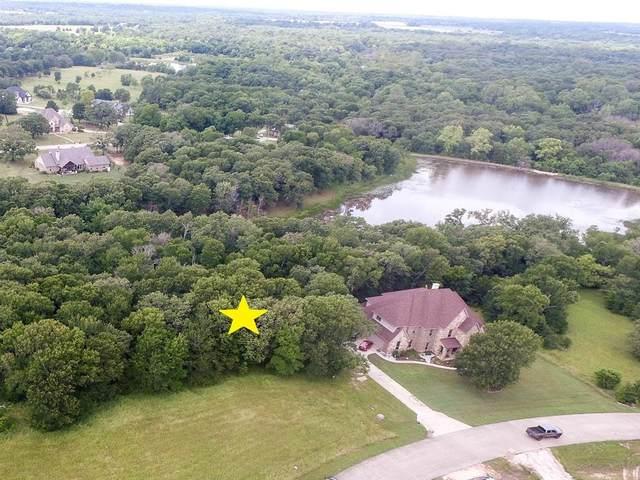 1077 Crystal Lake Drive, Wills Point, TX 75169 (MLS #14481241) :: Lisa Birdsong Group | Compass