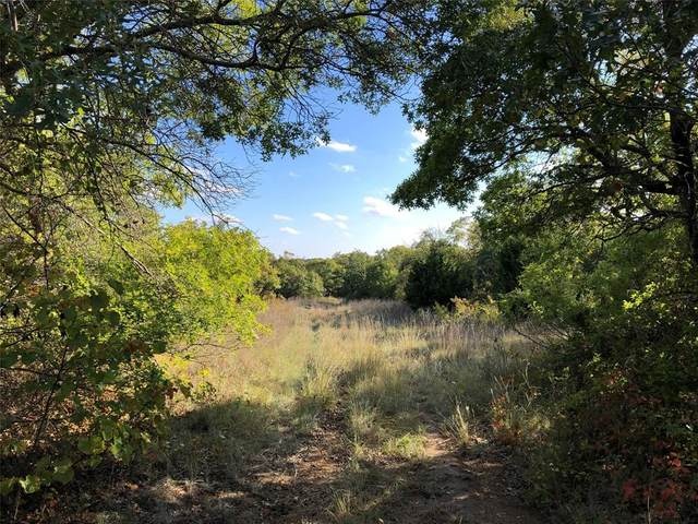 6495 County Road 477, May, TX 76857 (MLS #14481817) :: The Mauelshagen Group